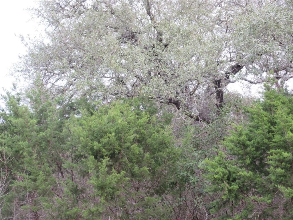 Sold Property | 10903 W Crestview Drive Jonestown, TX 78645 1