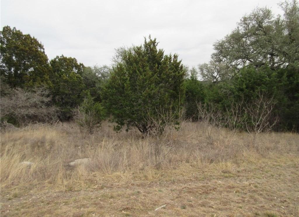 Sold Property | 10903 W Crestview Drive Jonestown, TX 78645 2