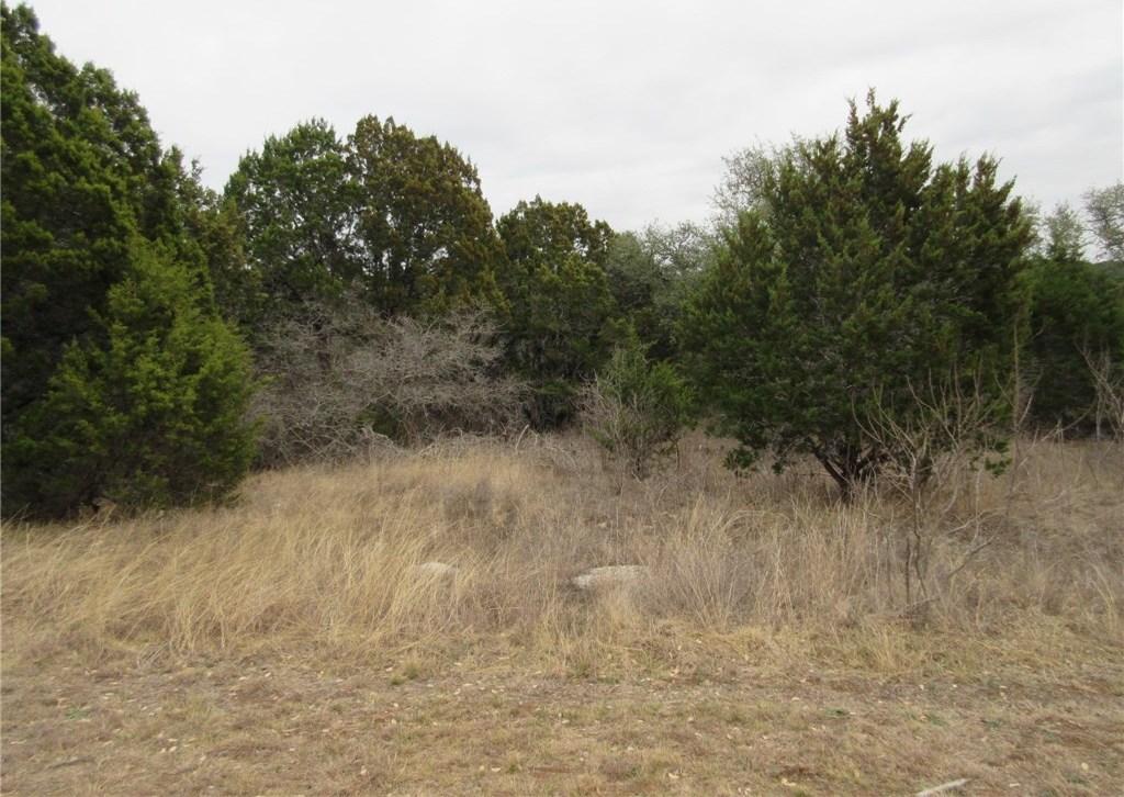 Sold Property | 10903 W Crestview Drive Jonestown, TX 78645 3