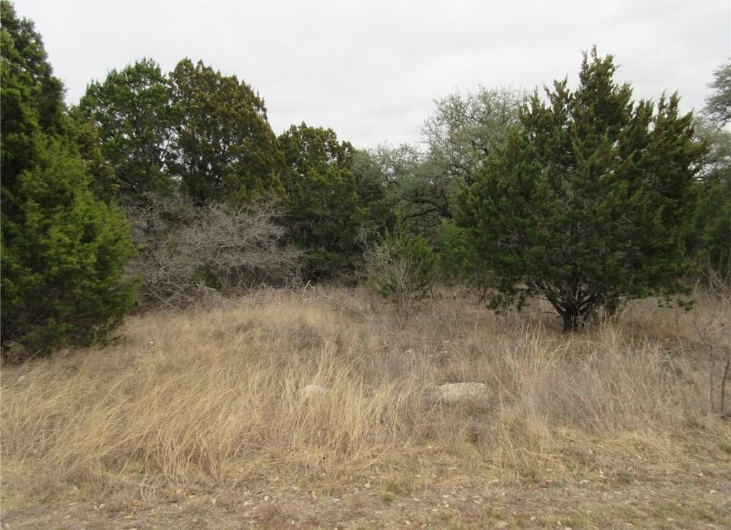 Sold Property | 10903 W Crestview Drive Jonestown, TX 78645 4