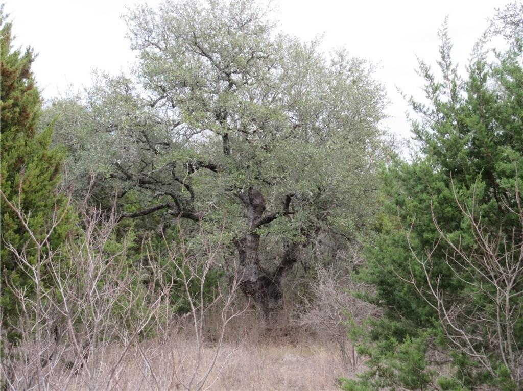 Sold Property | 10903 W Crestview Drive Jonestown, TX 78645 5
