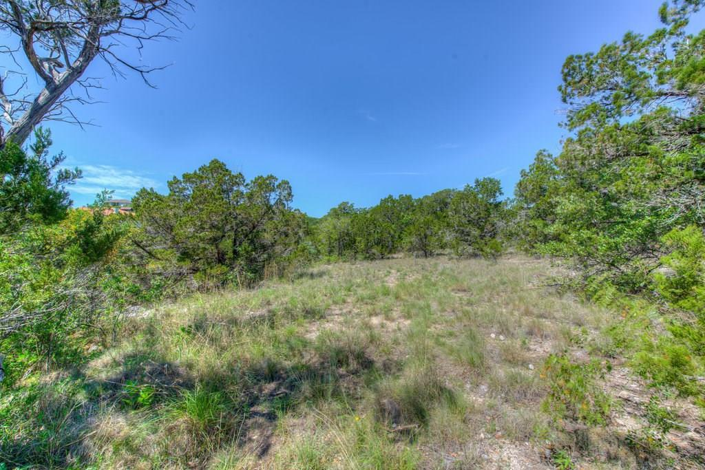 Sold Property | 14702 Hornsby Hill Road Austin, TX 78734 10