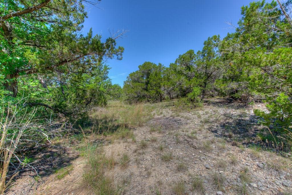 Sold Property | 14702 Hornsby Hill Road Austin, TX 78734 9