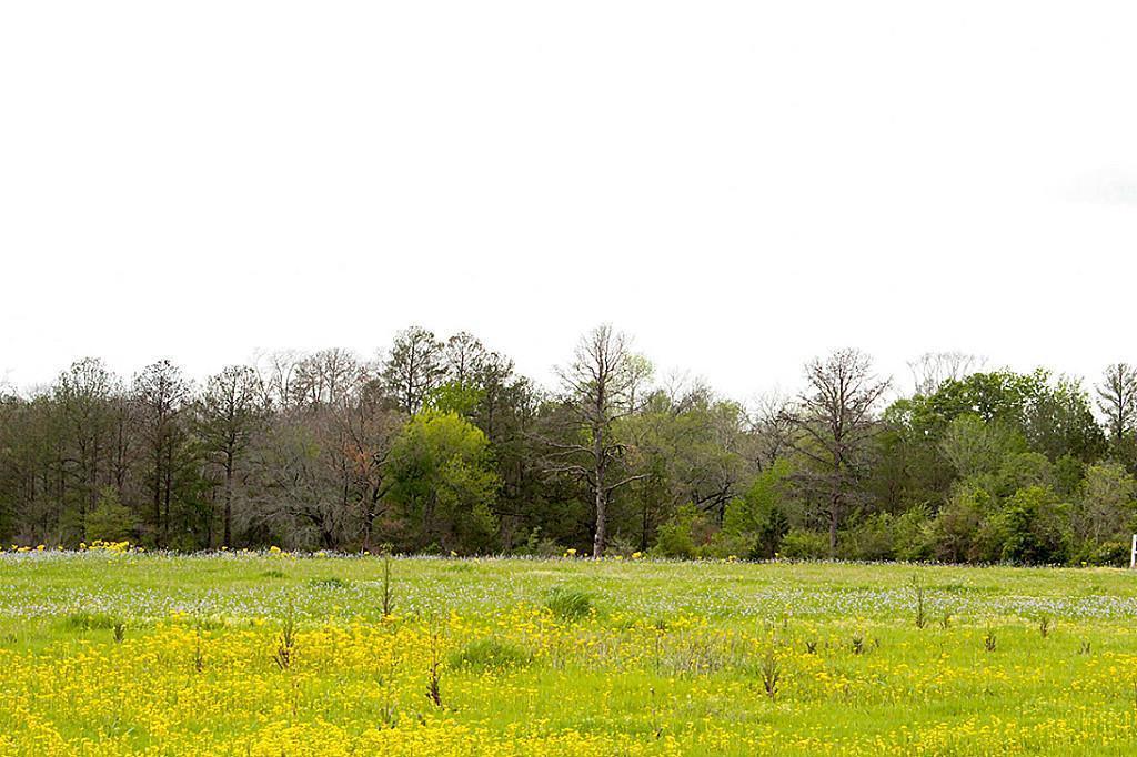 Active   27 Canyon Run Boulevard Huntsville, Texas 77320 4