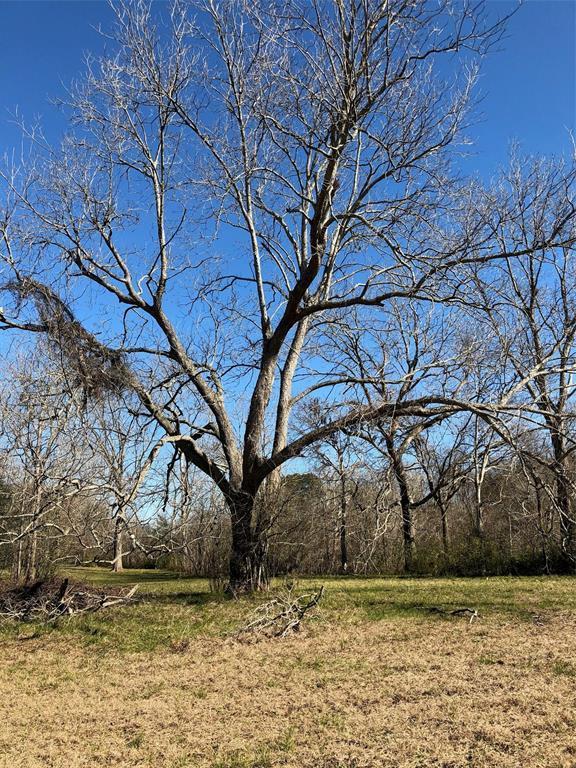 Pending | 9431 Thompson Lake Drive Missouri City, TX 77459 3