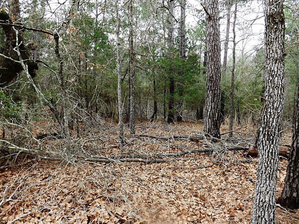 Sold Property   00 Stephen Lane Lots 193 & 194  La Grange, Texas 78945 4