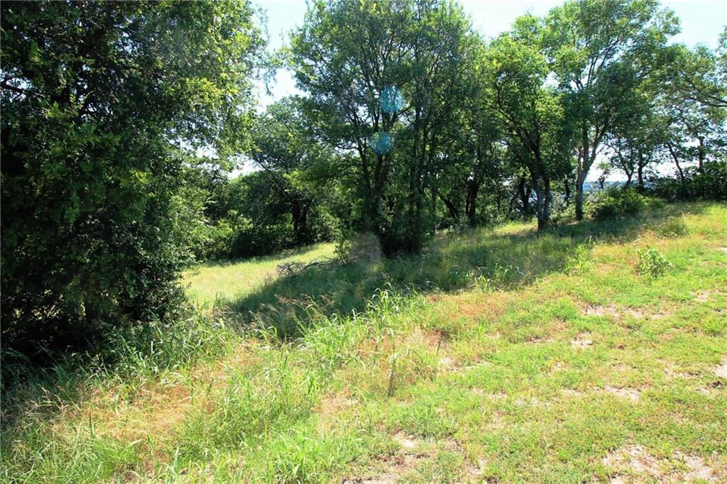 Active | Lot 51 Grand Harbor Boulevard Chico, TX 76431 5
