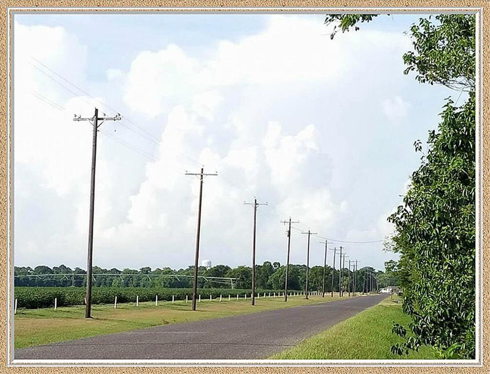 Active | 3771 Skelly Road Bay City, Texas 77414 3