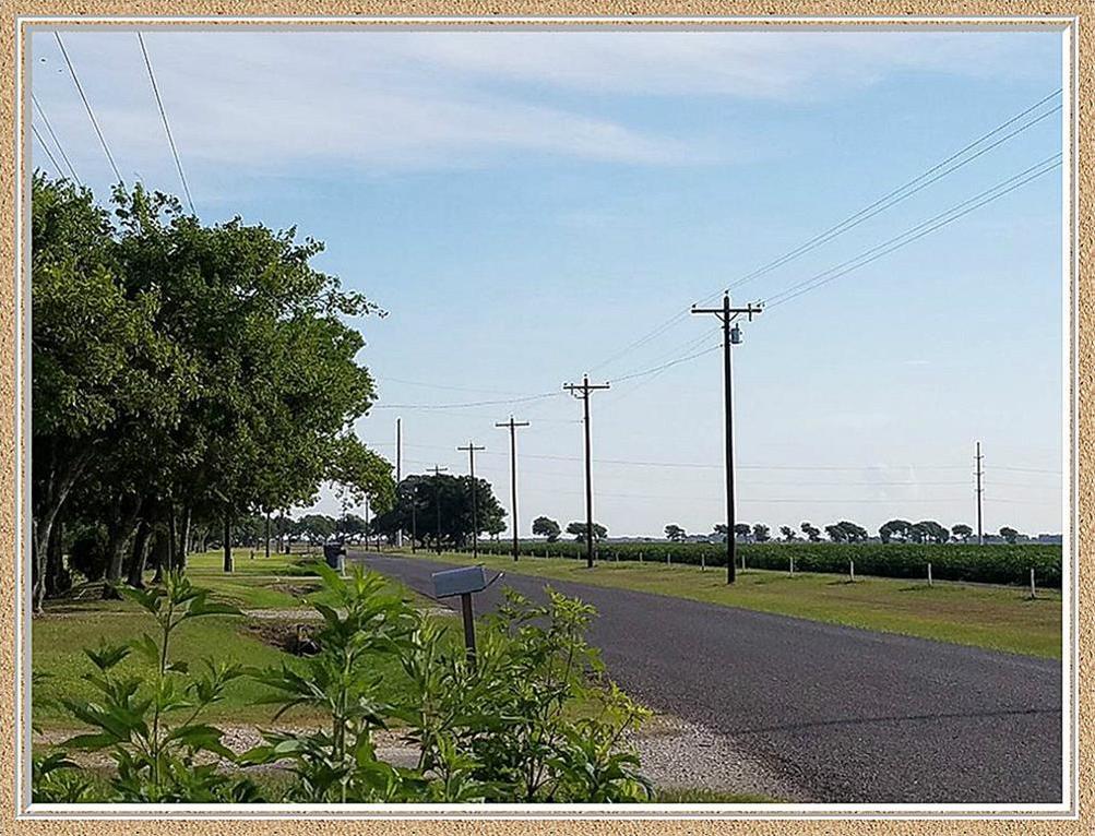 Active | 3771 Skelly Road Bay City, Texas 77414 7