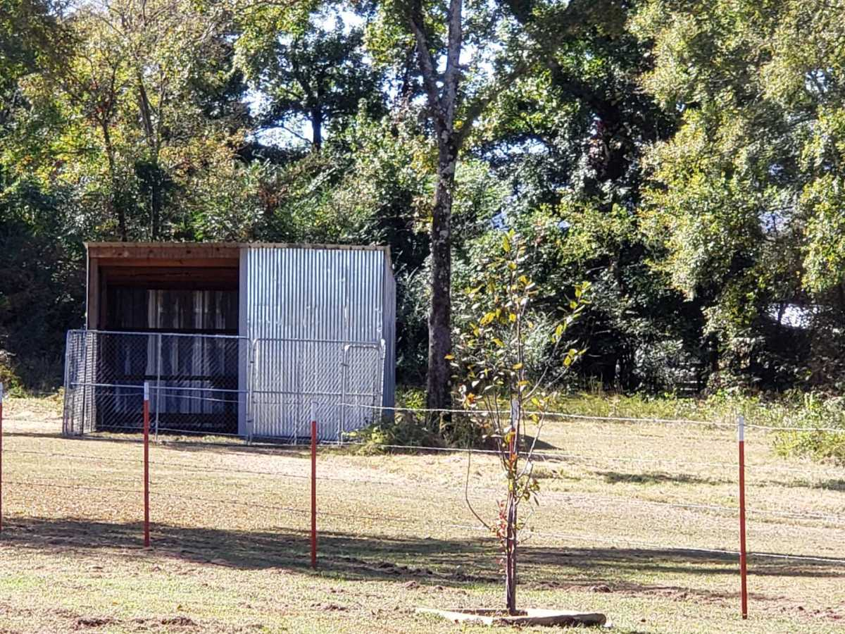Pending | 27095 Muse Rd Muse, OK 74949 45