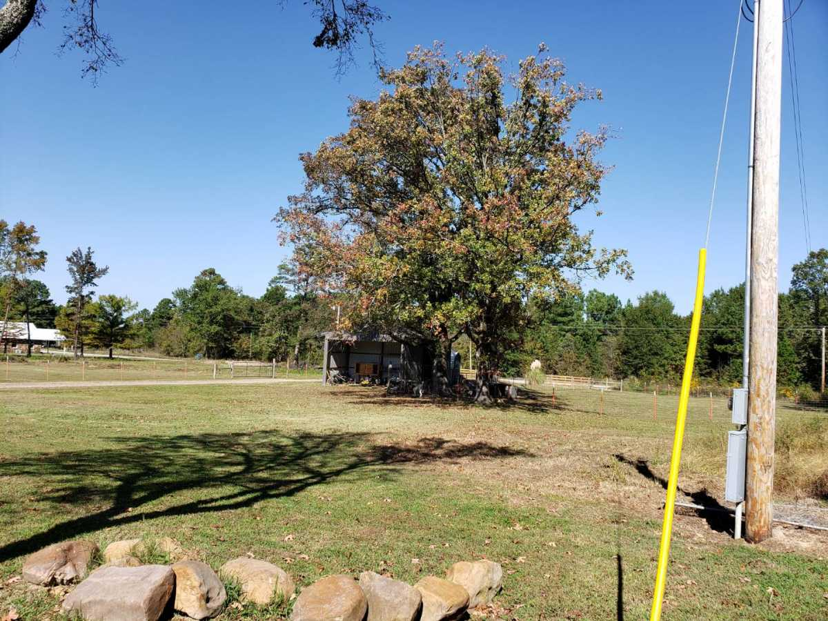 Pending | 27095 Muse Rd Muse, OK 74949 4