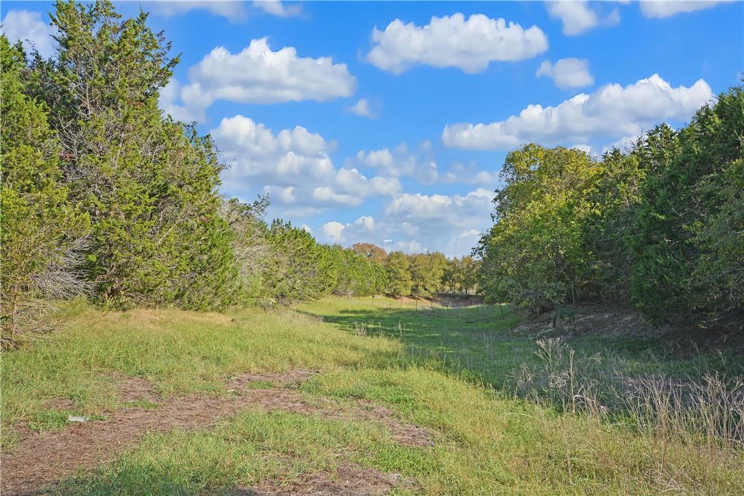 Active | Address Not Shown Driftwood, TX 78619 21