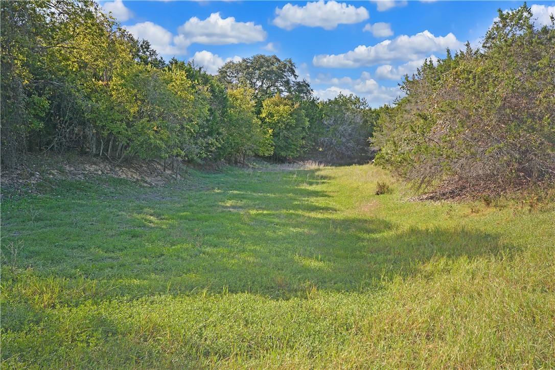Active | Address Not Shown Driftwood, TX 78619 3