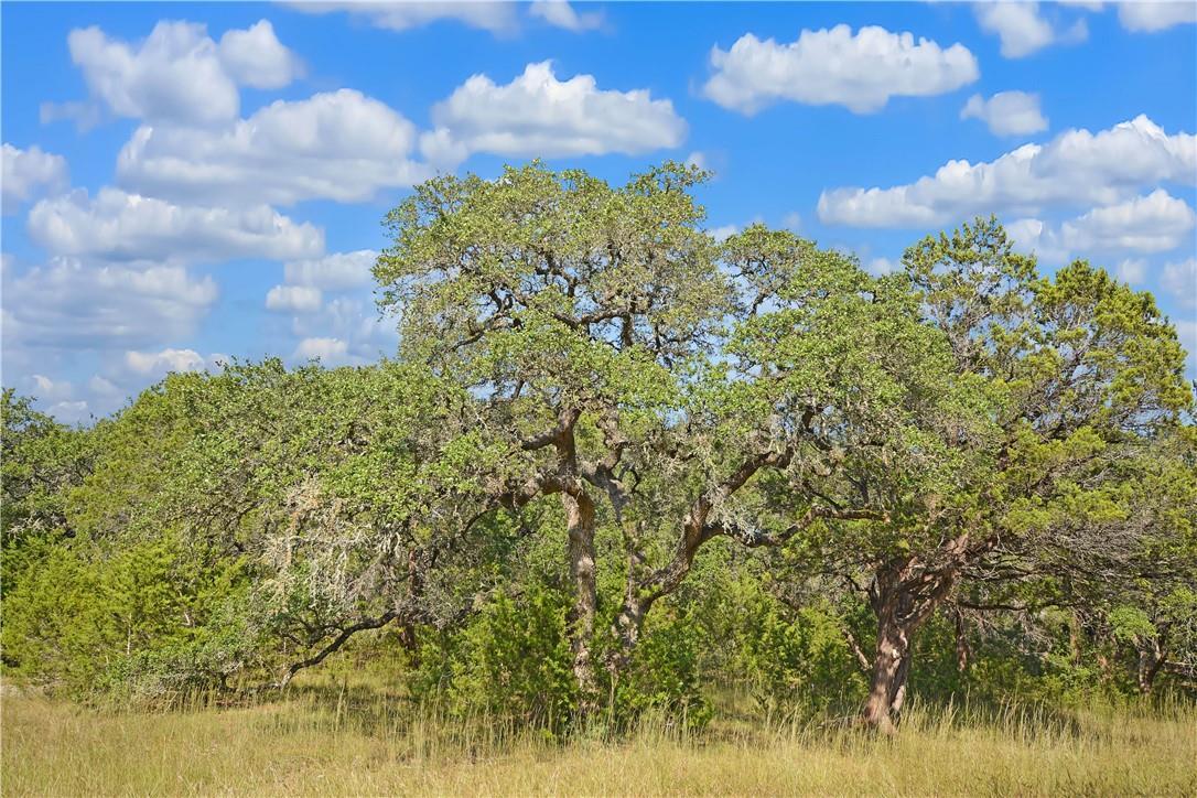 Active | Address Not Shown Driftwood, TX 78619 4