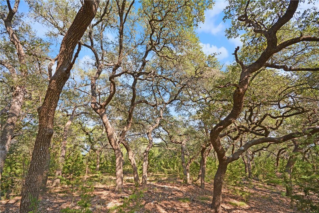 Active | Address Not Shown Driftwood, TX 78619 5