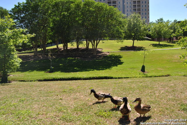 Active | 1 Towers Park Ln #1803 San Antonio, TX 78209 25