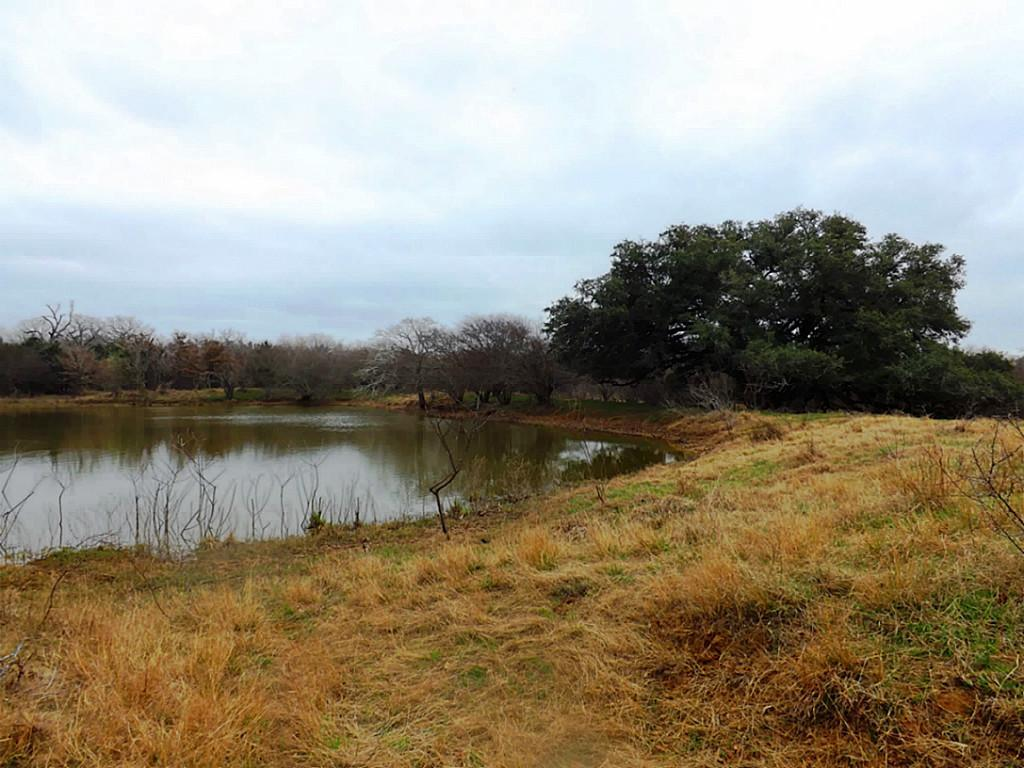 Fantastic High Fence Hunting Property in Waelder | 0 Hwy 90 Waelder, Texas 78959 2