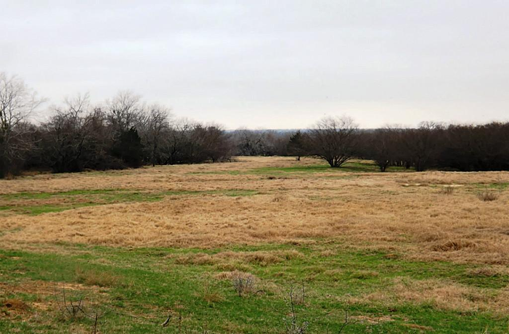 Fantastic High Fence Hunting Property in Waelder | 0 Hwy 90 Waelder, Texas 78959 3