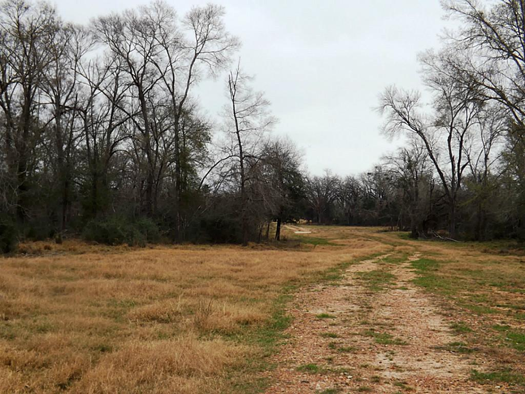 Fantastic High Fence Hunting Property in Waelder | 0 Hwy 90 Waelder, Texas 78959 13
