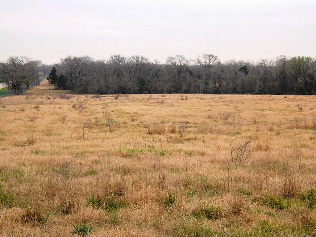 Fantastic High Fence Hunting Property in Waelder | 0 Hwy 90 Waelder, Texas 78959 15