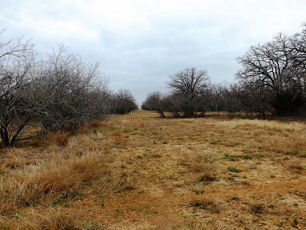 Fantastic High Fence Hunting Property in Waelder | 0 Hwy 90 Waelder, Texas 78959 16