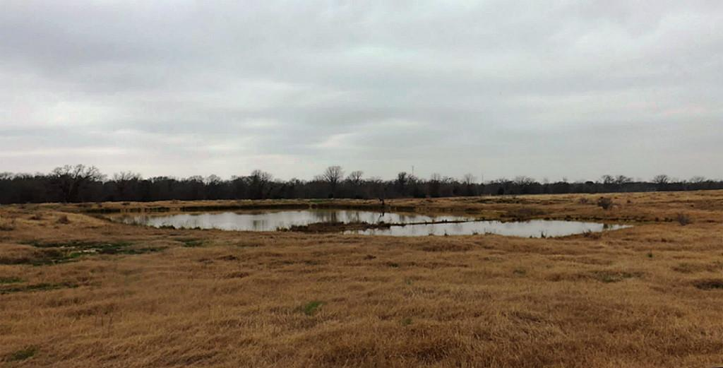Fantastic High Fence Hunting Property in Waelder | 0 Hwy 90 Waelder, Texas 78959 17