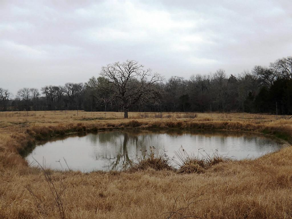 Fantastic High Fence Hunting Property in Waelder | 0 Hwy 90 Waelder, Texas 78959 20