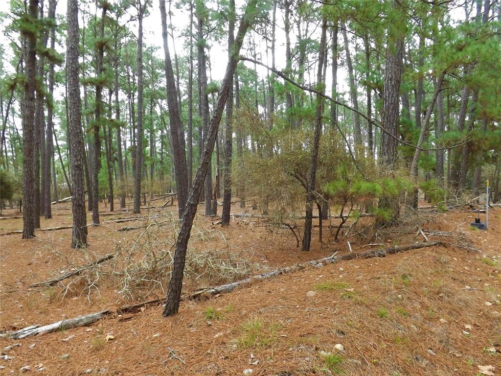 Sold Property | 000 Stephen Lane La Grange, Texas 78945 10