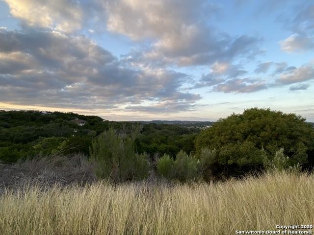 Active | 24034 Verde River San Antonio, TX 78255 1