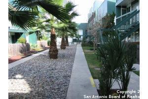 Active   3243 Nacogdoches Rd   #1202 San Antonio, TX 78217 1
