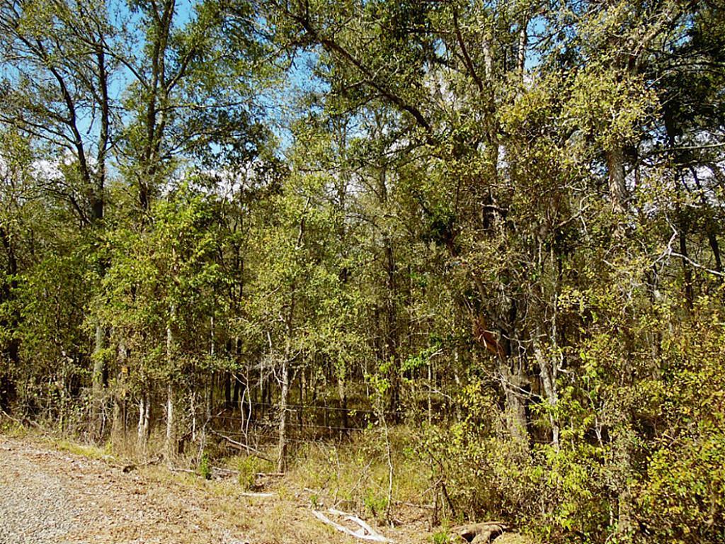 Sold Property   0 Hannay  Brookshire, Texas 77423 0