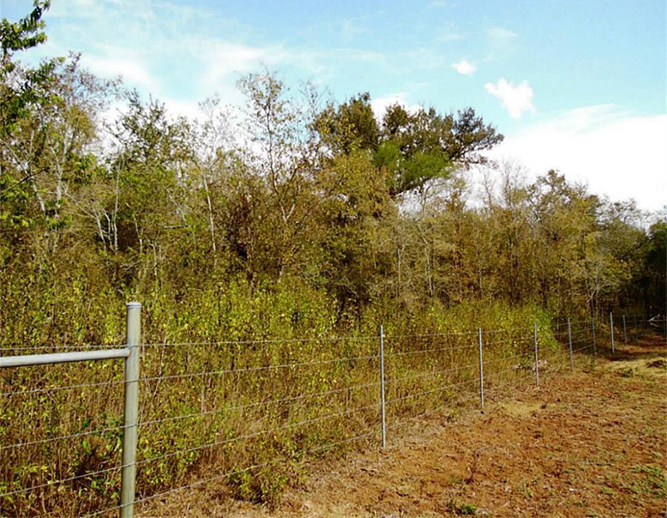 Sold Property   0 Hannay  Brookshire, Texas 77423 1