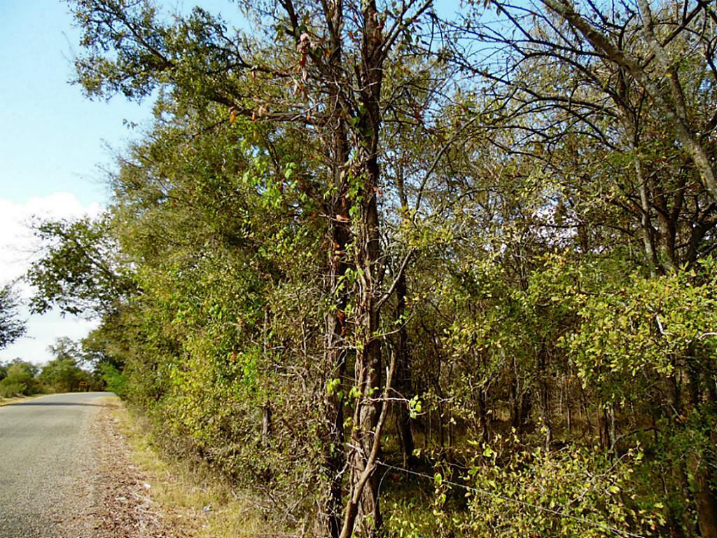 Sold Property   0 Hannay  Brookshire, Texas 77423 4