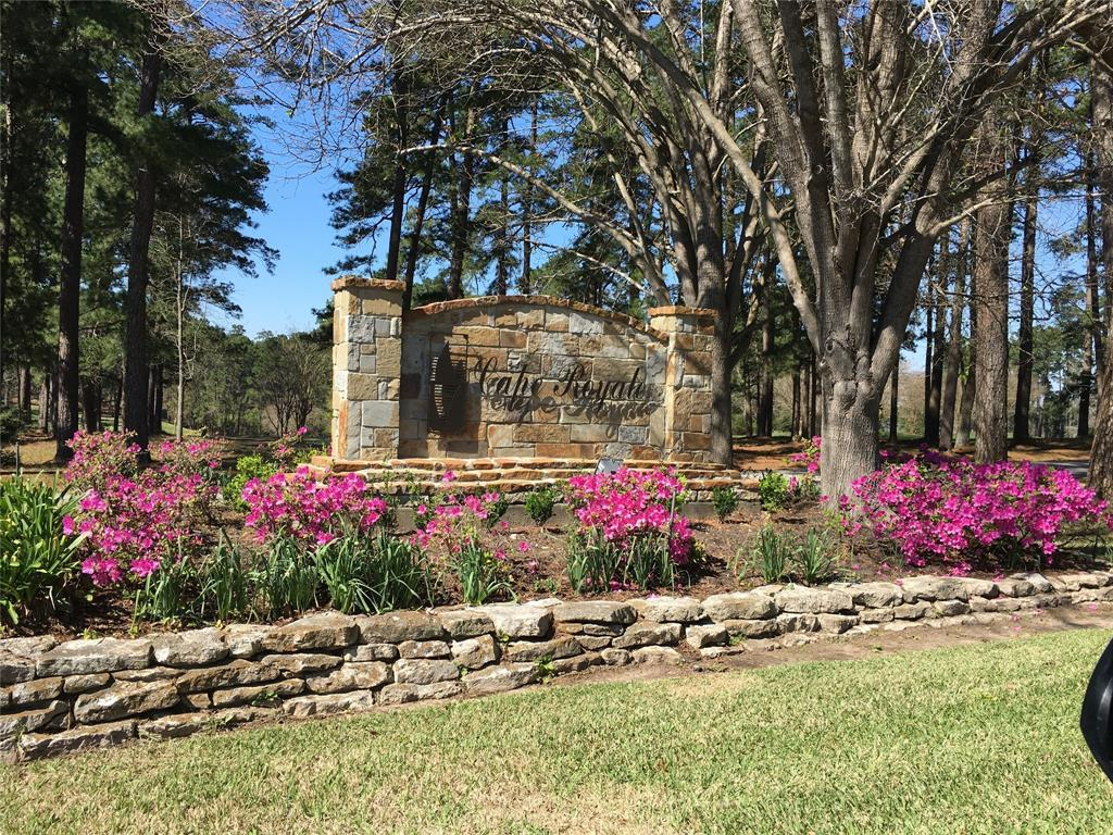 Active | 123 Green Tree Drive Coldspring, TX 77331 0