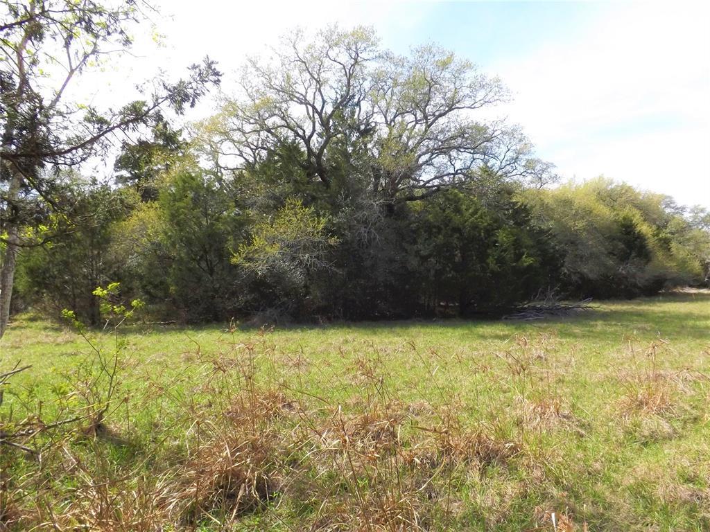 Fantastic Property in Alleyton!  Wildlife, Trees and You! | 1297 Frelsburg  Road Alleyton, TX 78935 16