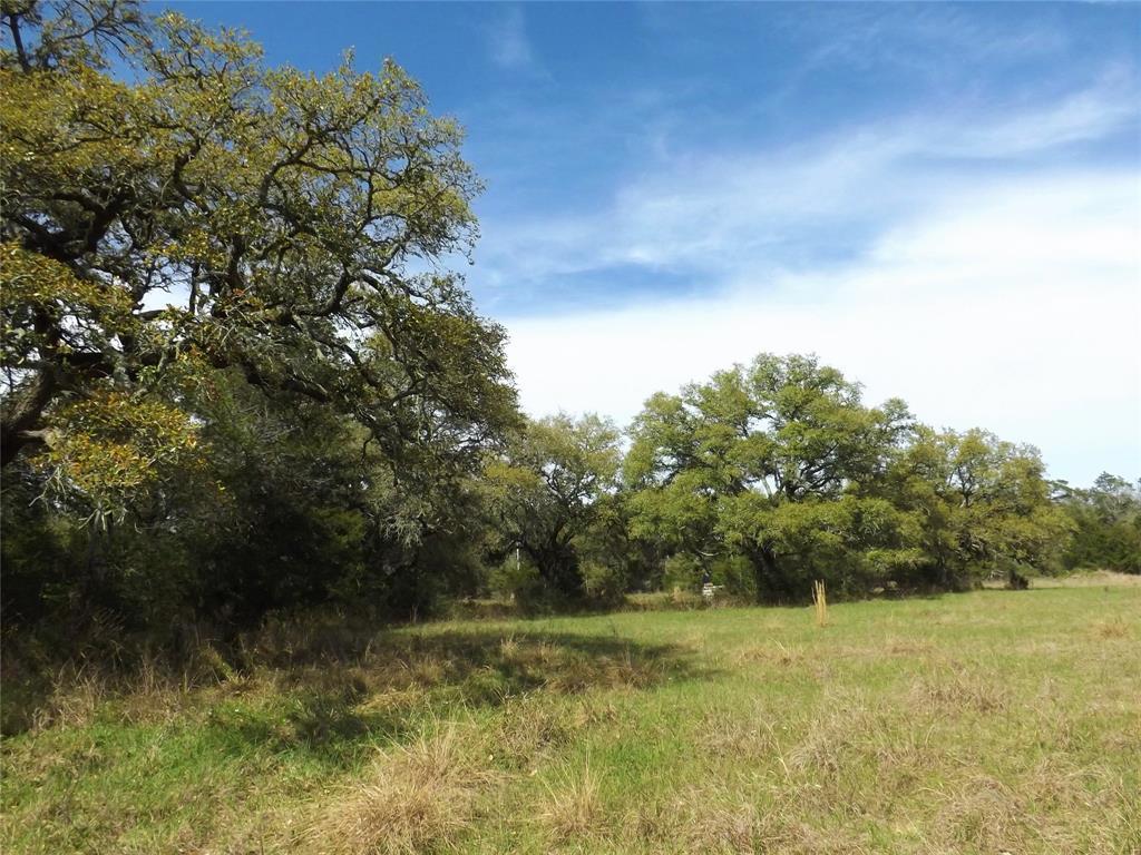 Fantastic Property in Alleyton!  Wildlife, Trees and You! | 1297 Frelsburg  Road Alleyton, TX 78935 8
