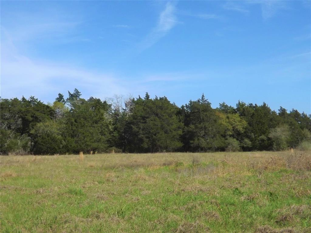 Fantastic Property in Alleyton!  Wildlife, Trees and You! | 1297 Frelsburg  Road Alleyton, TX 78935 9