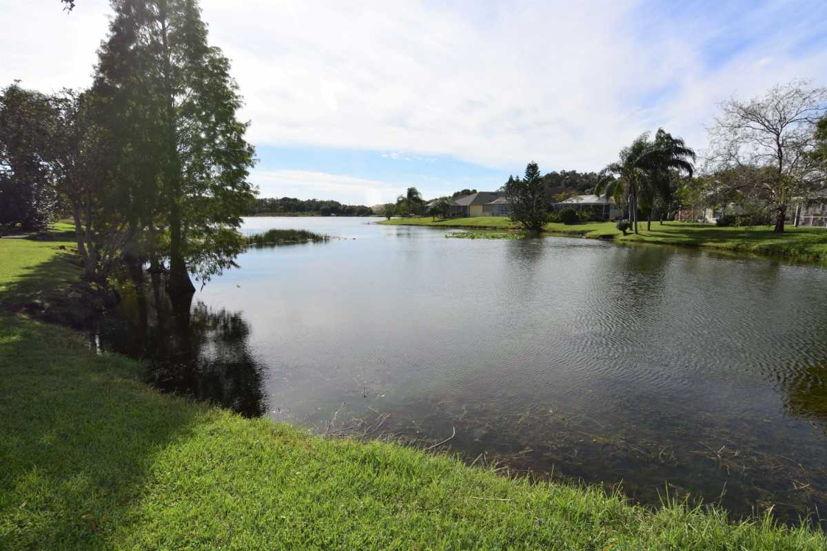 Brandon,for sale, sterling ranch, waterfront,riverview, | 1711 Kirtley Drive Brandon, FL 33511 21