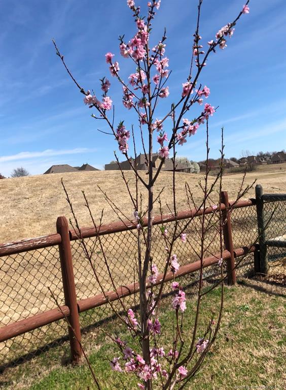 Active | 3909 N Narcissus Avenue Broken Arrow, Oklahoma 74012 3