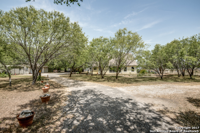 Active | 3951 BRIAR HOLLOW ST  San Antonio, TX 78247 1