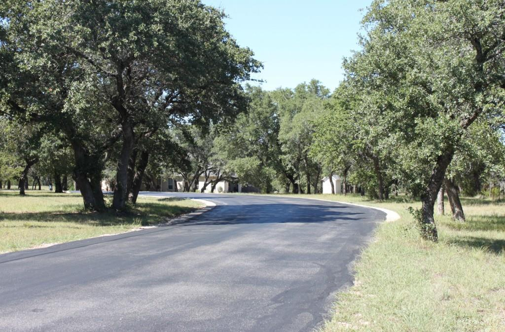 Sold Property | 133 Little Gabriel River DR Liberty Hill, TX 78642 5