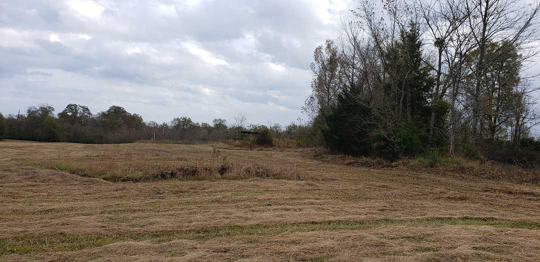 land, ranch, recreational, hunting, oklahoma, cabin   Hwy 3 Idabel, OK 74745 11