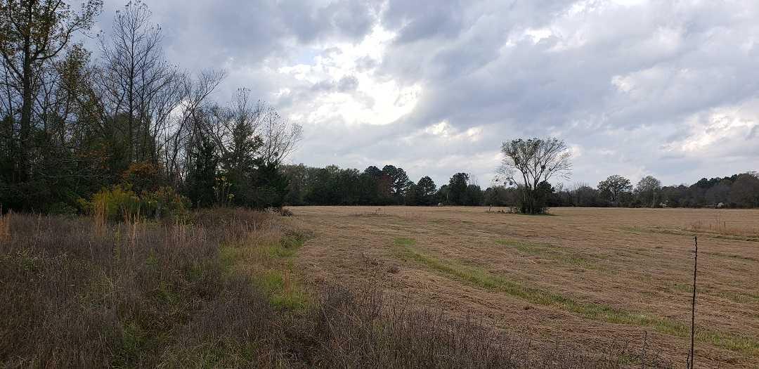 land, ranch, recreational, hunting, oklahoma, cabin   Hwy 3 Idabel, OK 74745 5