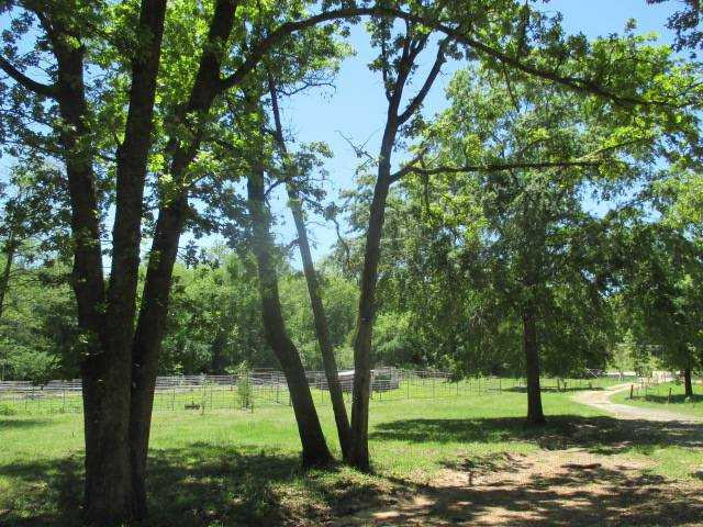 land, ranch, recreational, hunting, oklahoma, cabin | 97 N 4020 Rd Boswell, OK 74727 7