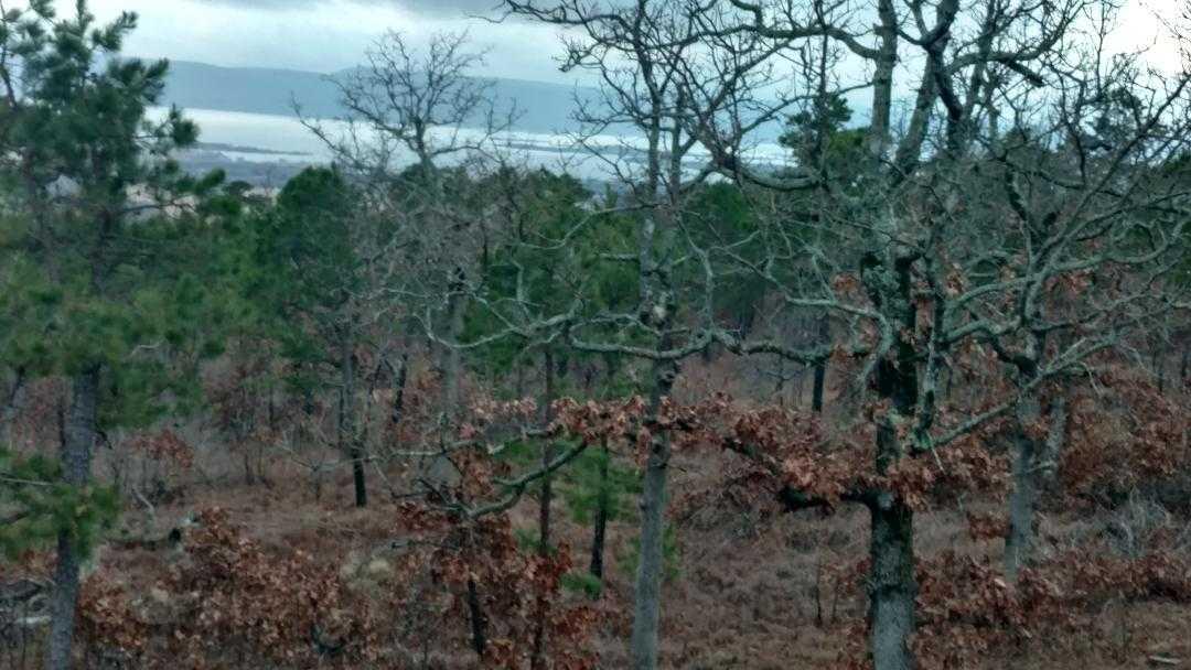 land, ranch, recreational, hunting, oklahoma, cabin | Freedom Ridge Yanush, OK 74571 36