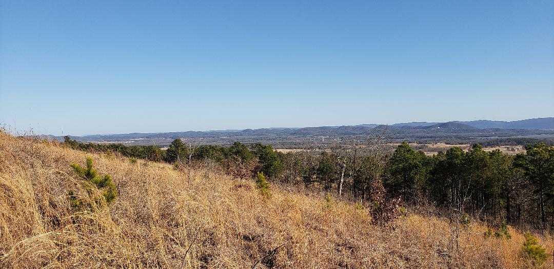 land, ranch, recreational, hunting, oklahoma, cabin | Freedom Ridge Yanush, OK 74571 6