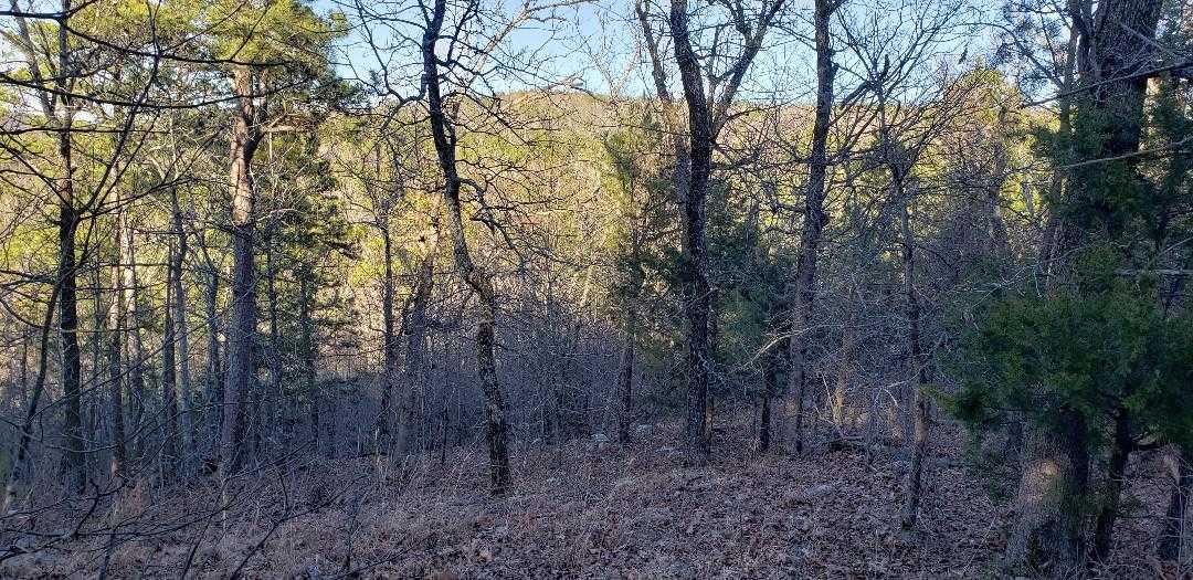 land, ranch, recreational, hunting, oklahoma, cabin | Freedom Ridge Yanush, OK 74571 8