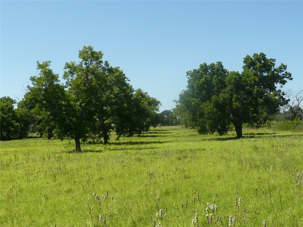 Off Market | 13707 N Highway 183  Rising Star, Texas 76471 17