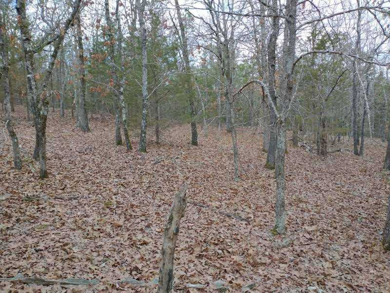 land, ranch, recreational, hunting, oklahoma, cabin | Winding Stairs #1 Bengal, OK 74563 9