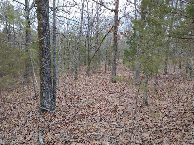 land, ranch, recreational, hunting, oklahoma, cabin | Winding Stairs #1 Bengal, OK 74563 11